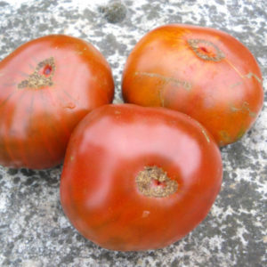 Tomate Paul Robeson